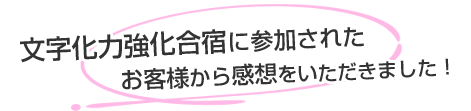 mojikaryoku_voice_ttl